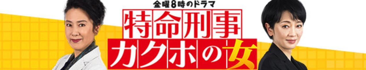 カクホの女~神奈川県警・特命捜査~