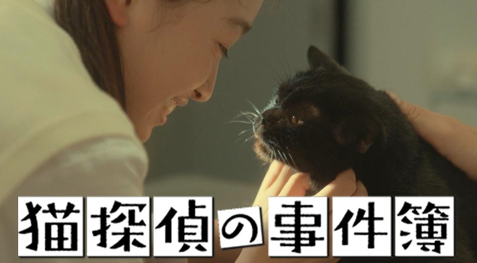猫探偵の事件簿
