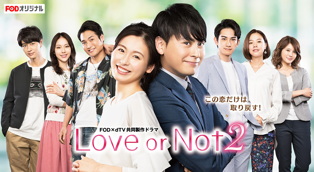 Love or Not2